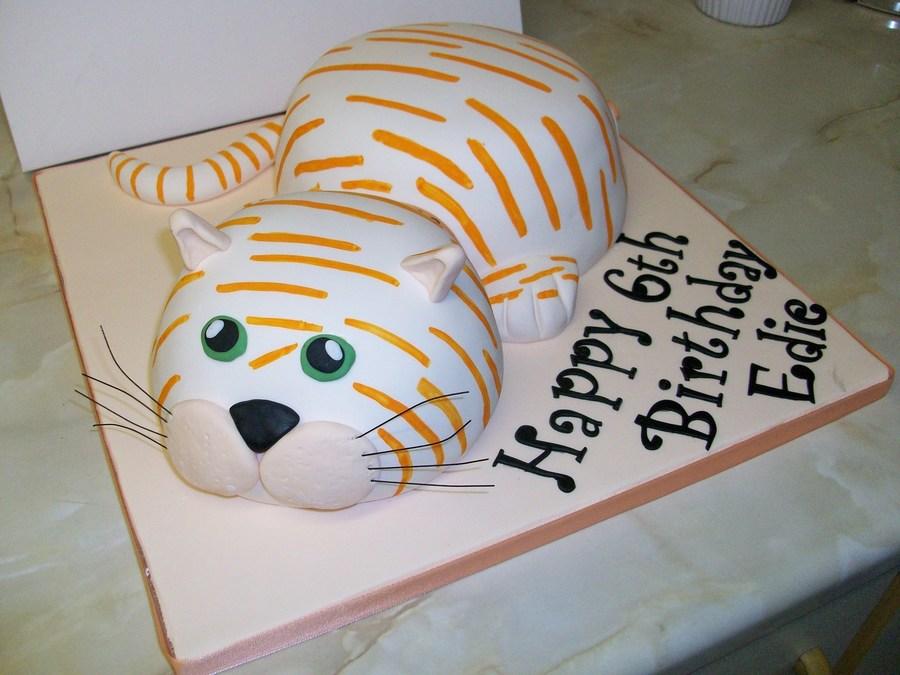 Ginger Cat Cakecentral