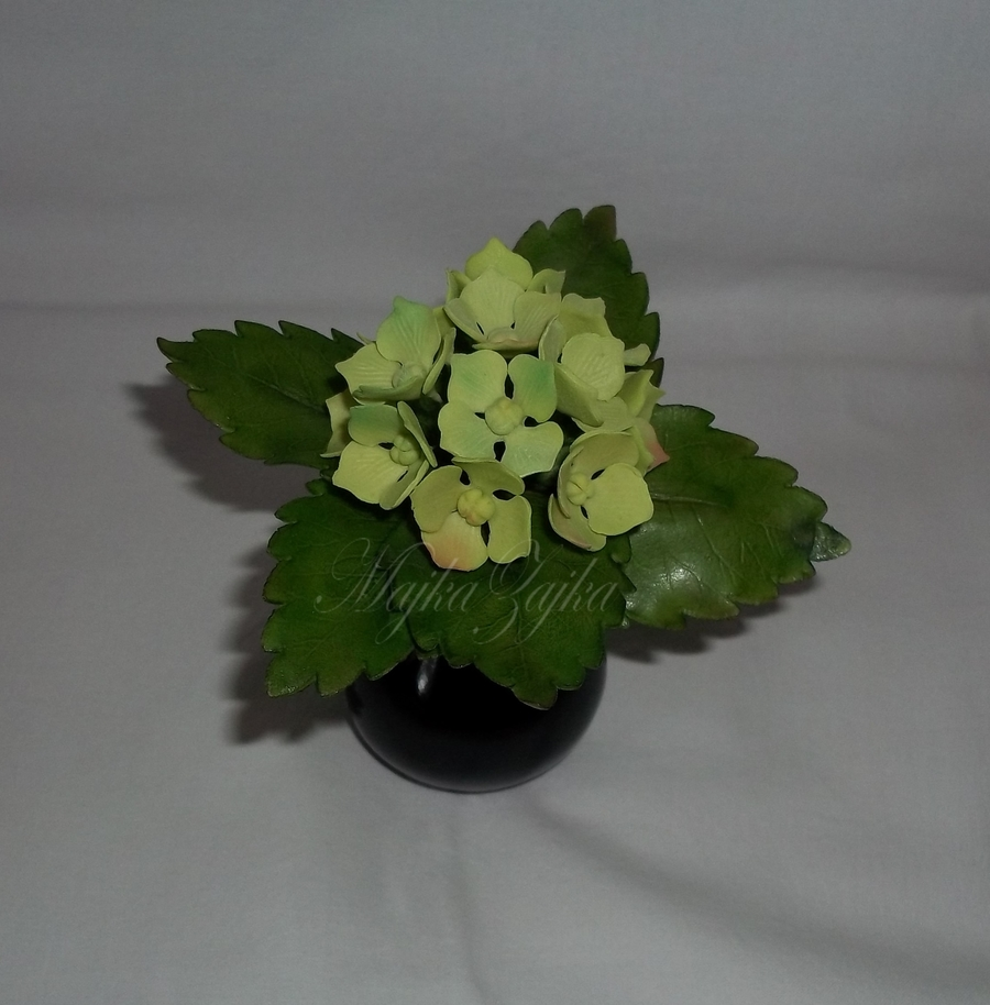 Hydrangea on Cake Central