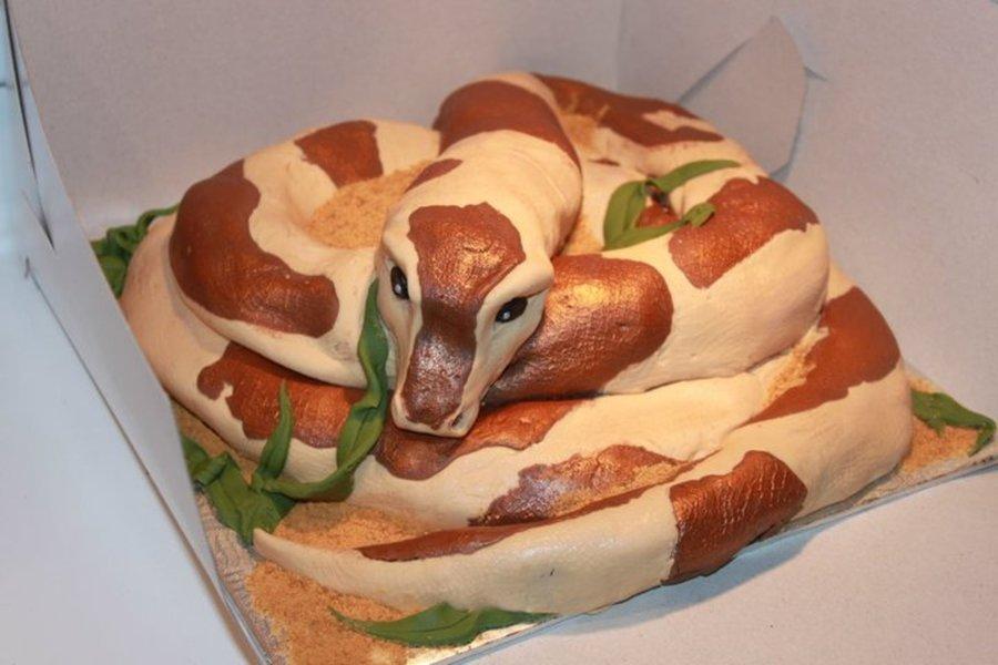 Snake Cake With Bundt Pan