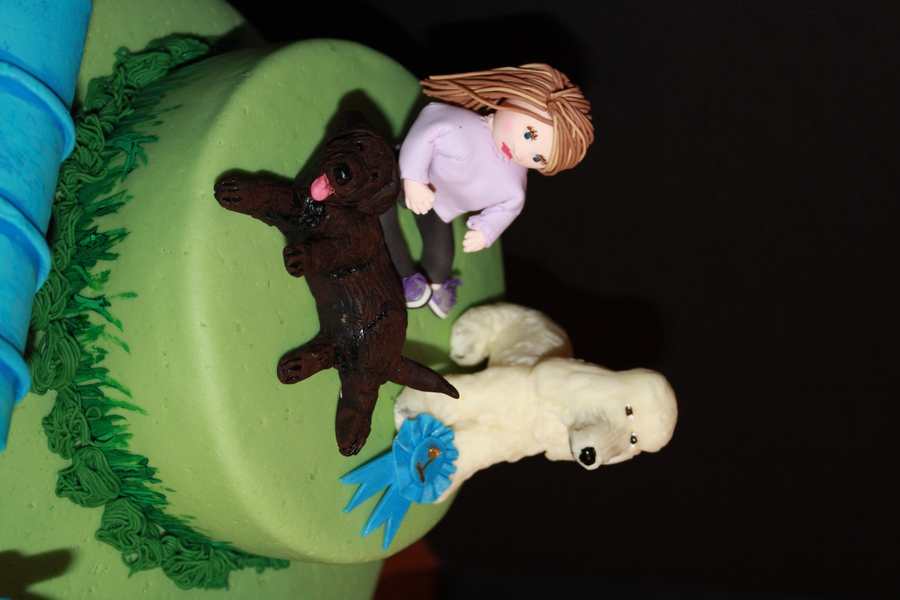 Dog Agility Themed Sweet 16 Cake - CakeCentral.com