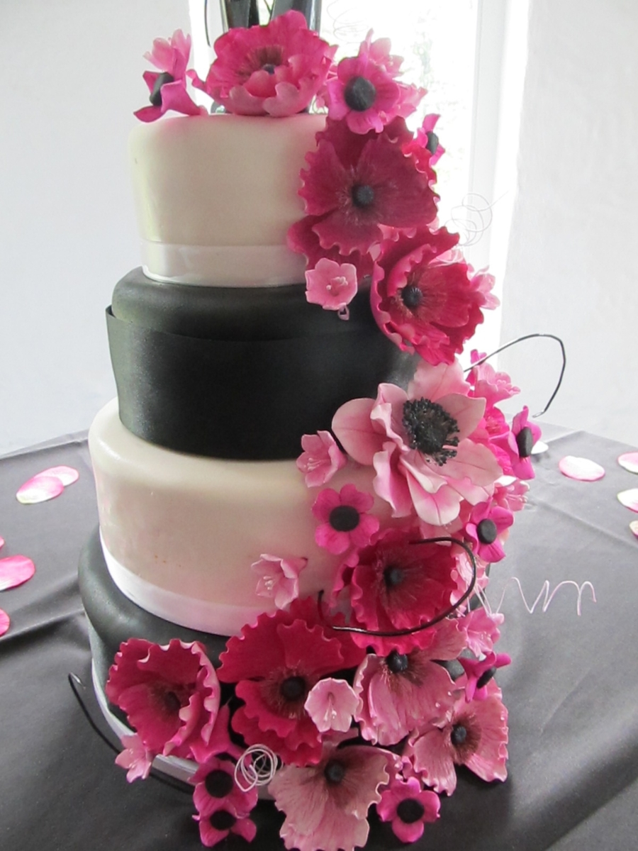 Hot Pink And Black Wedding Cake on Cake Central