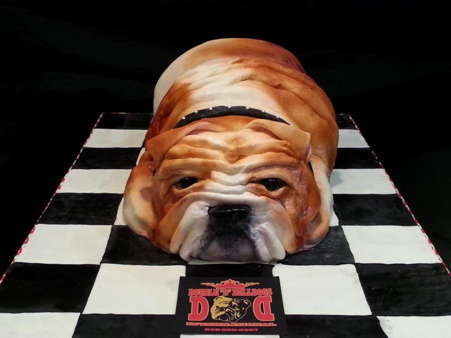 Carved Chocolate Cake Chocolate Ganache And Fondant For My Friend Whos A Breeder Of English Bulldogs Replica Of Her First Dog on Cake Central