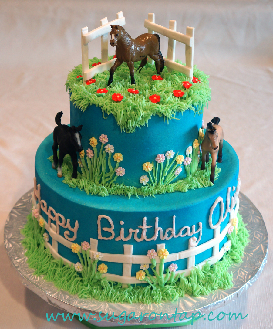 Olivia S Horse Cake Cakecentral Com