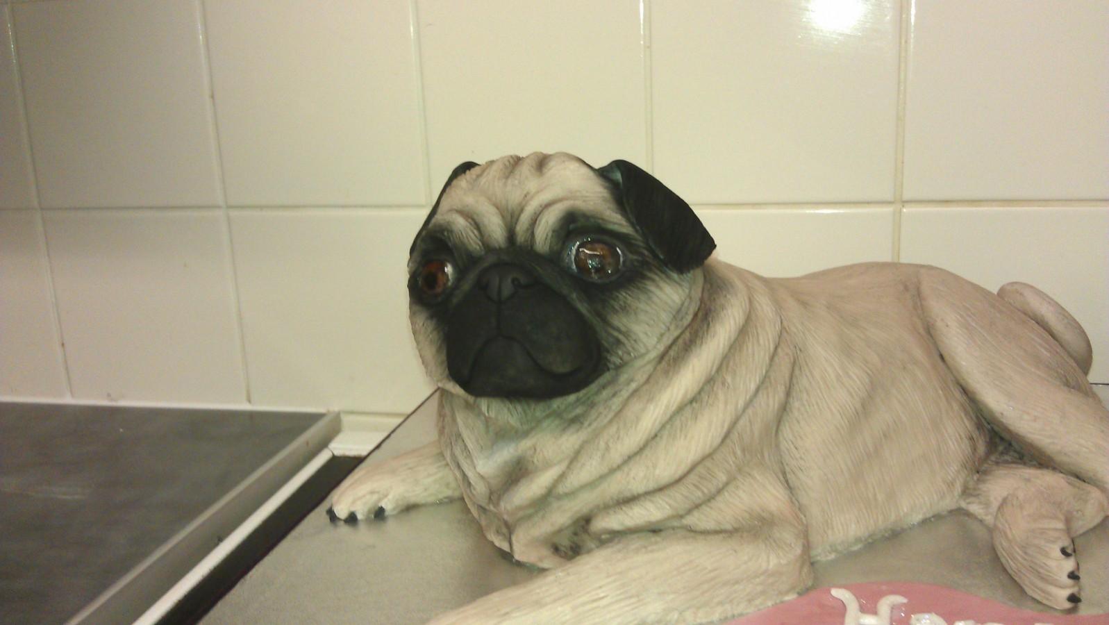 Pug Dog Cakecentral Com