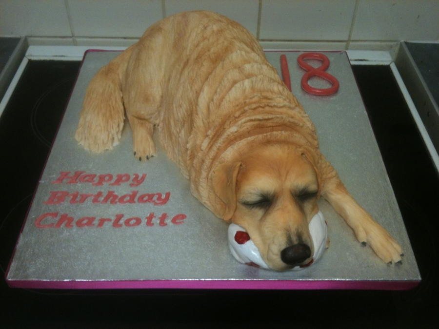 Where To Get Dog Birthday Cake