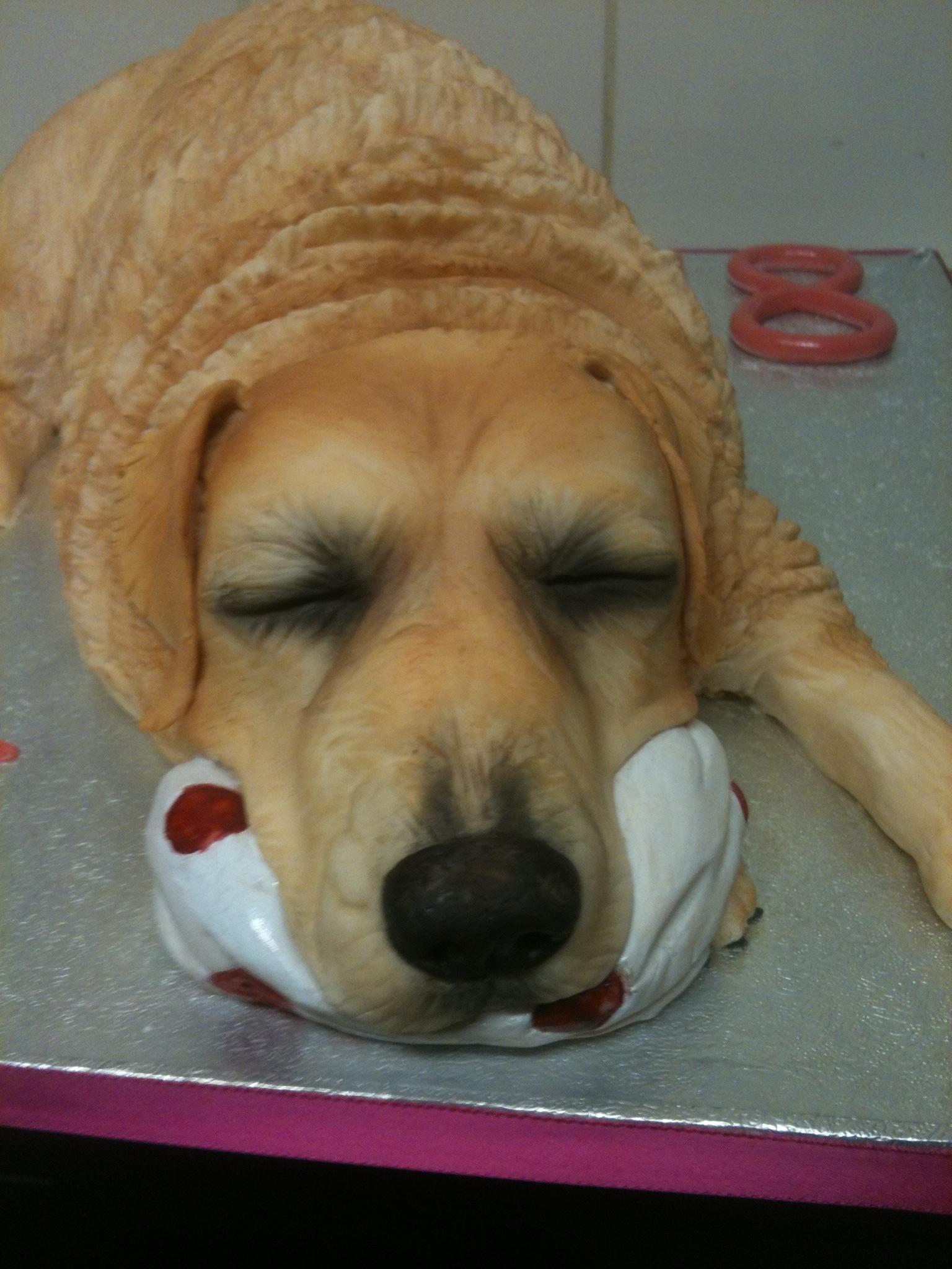 Golden Retriever Dog Cake Cakecentral Com