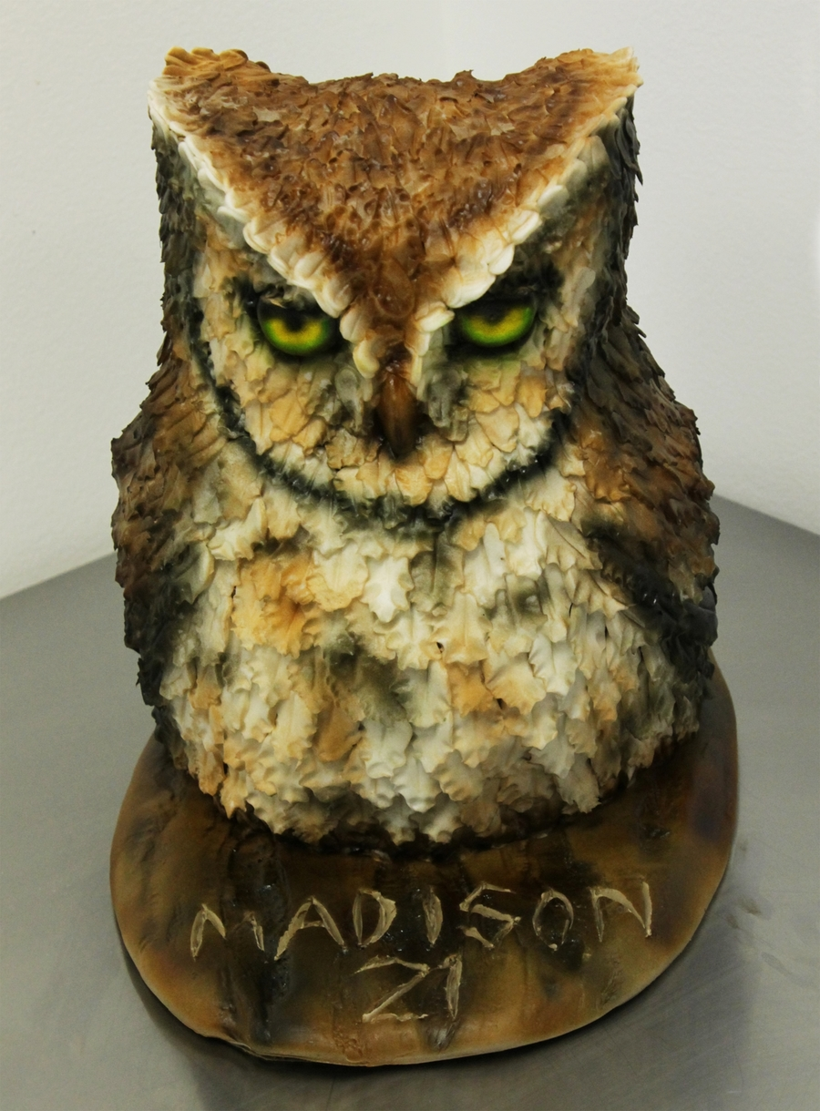Images Of Owl Birthday Cakes