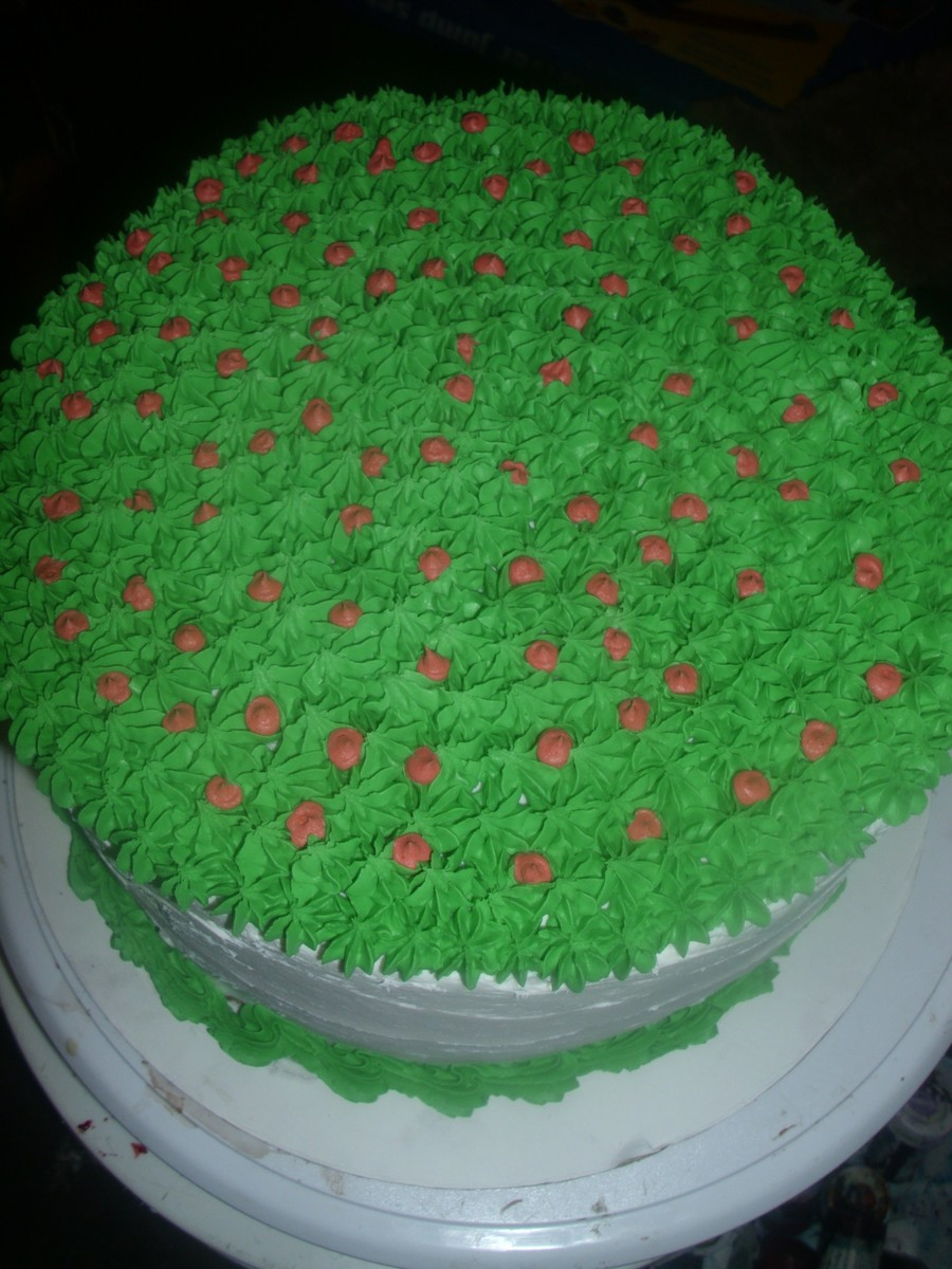Holly Bush on Cake Central