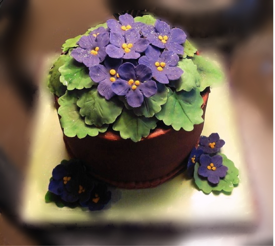 Flowers That Look Like A Birthday Cake
