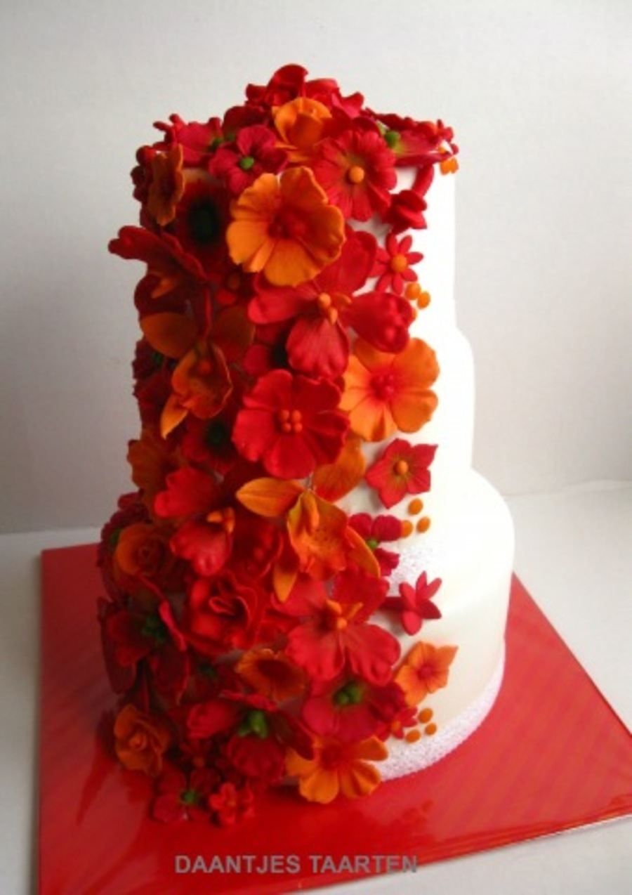 Red And Orange on Cake Central