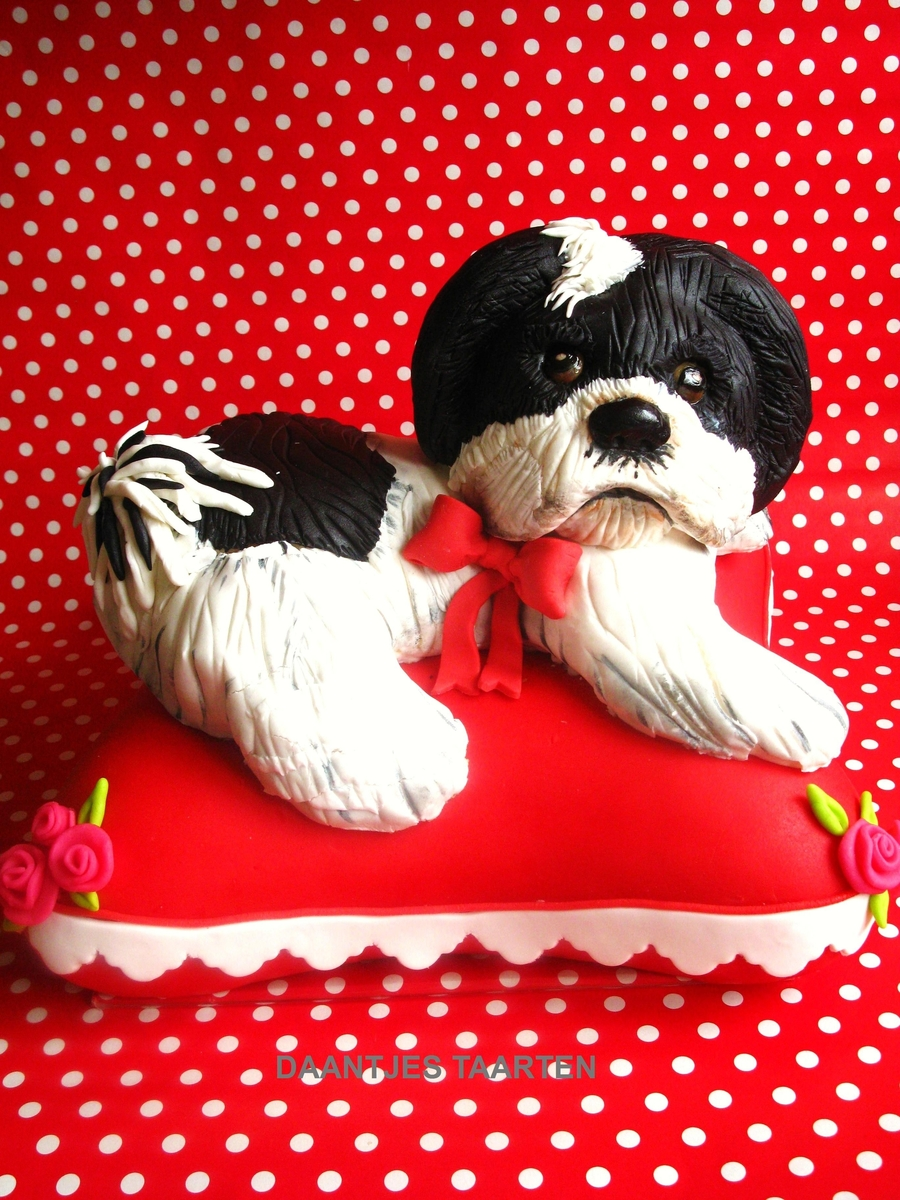Shih Tzu Puppie on Cake Central