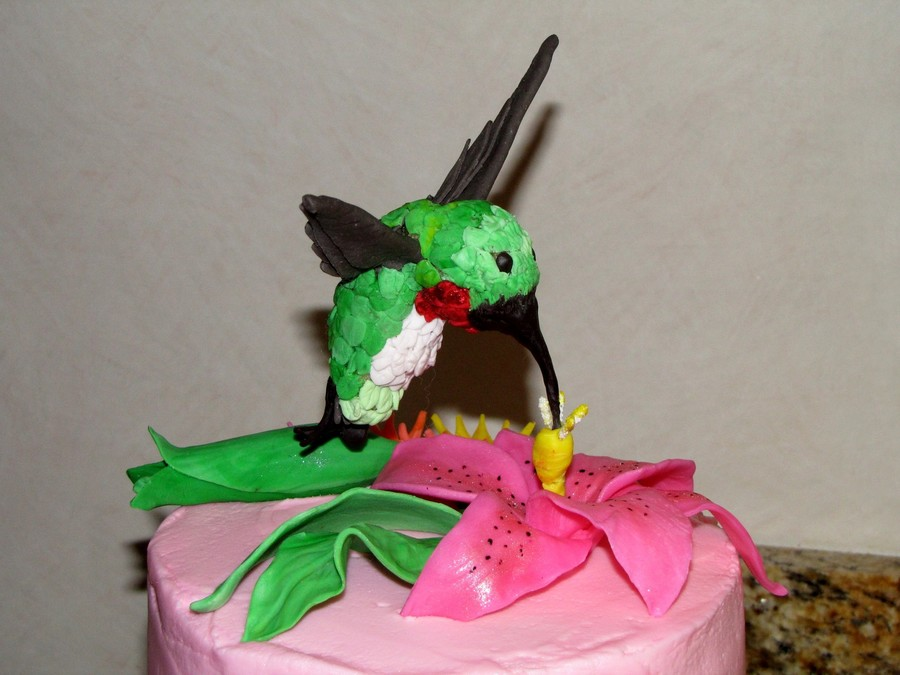 Tropical Hummingbird Birthday Cake Cakecentral
