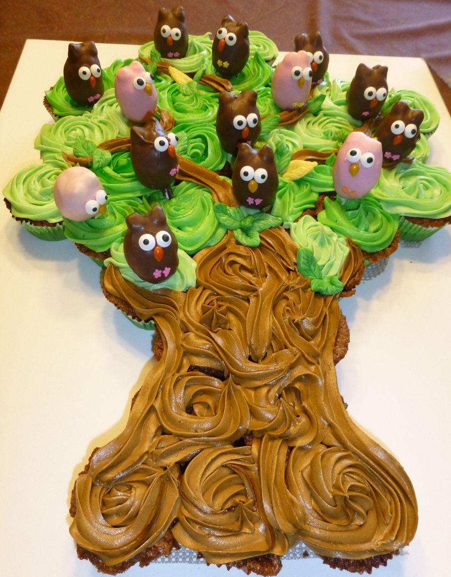 Cupcake Tree With Owl Cakepops Cakecentral Com