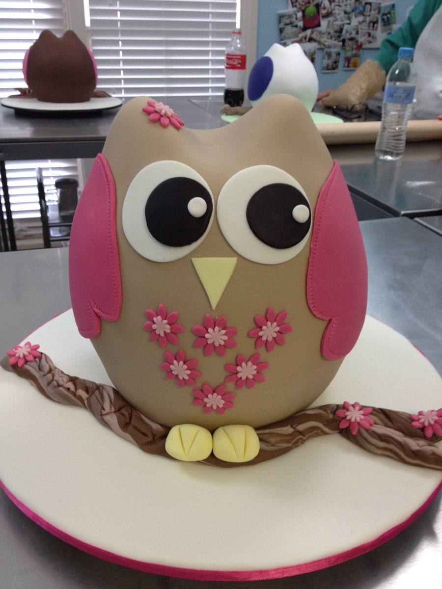 Owl Birthday Cakes For Twins
