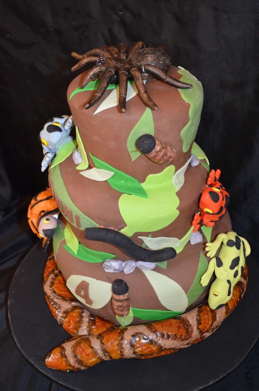 Reptile Cake Cakecentral Com