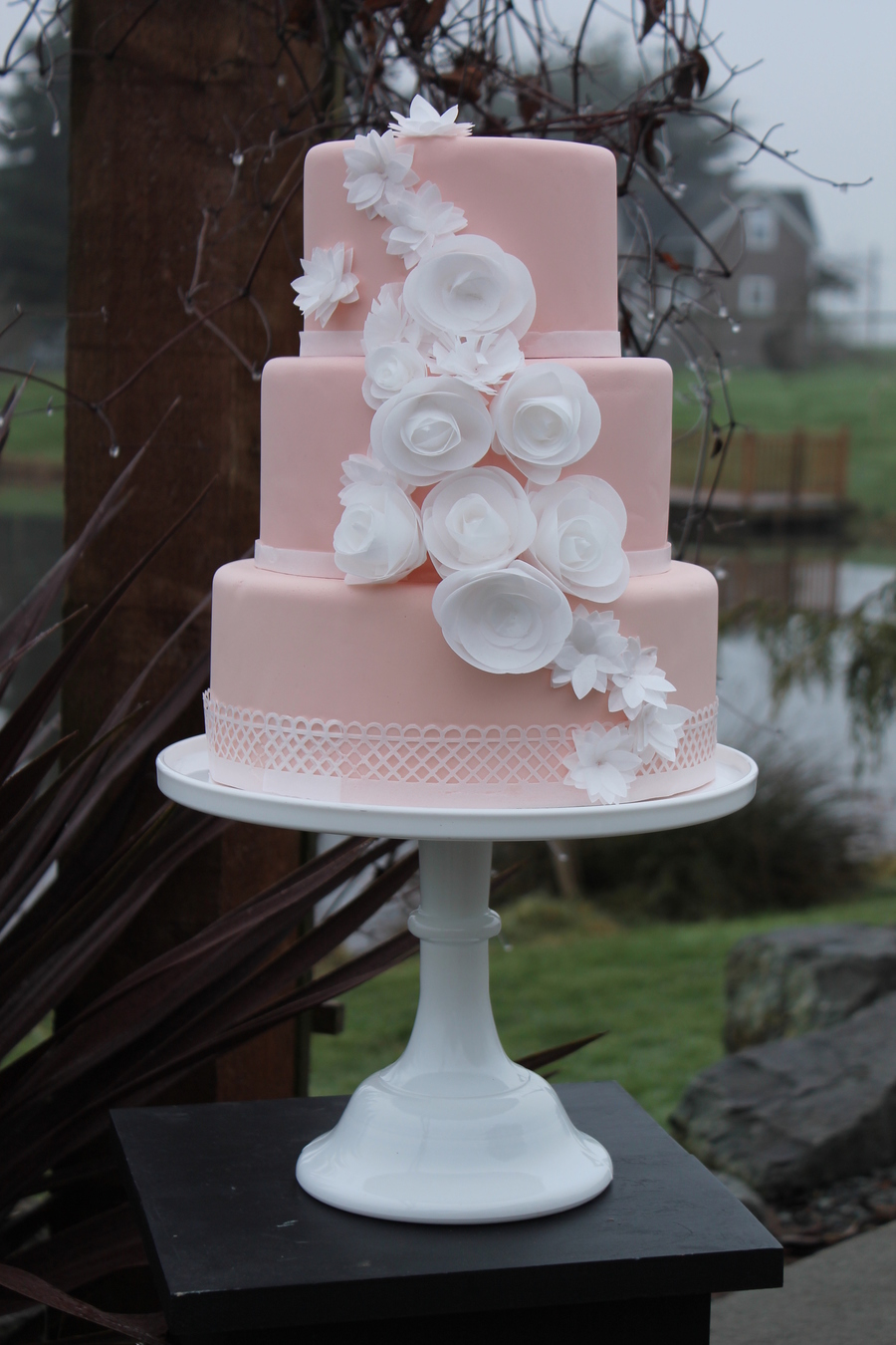 Blush And Ivory on Cake Central