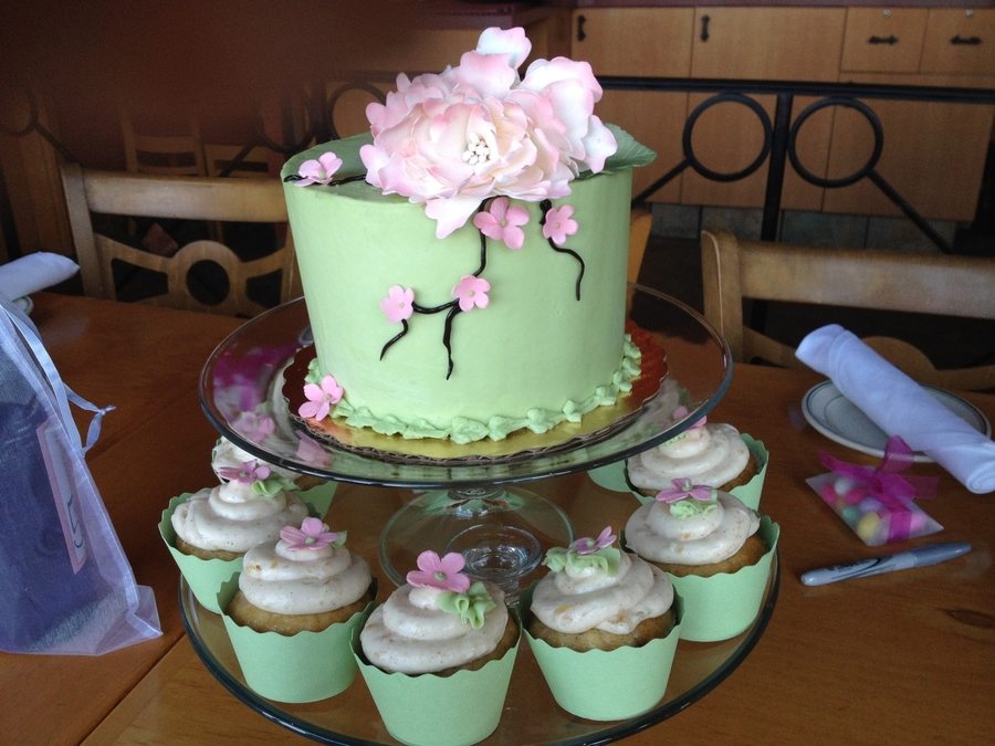 Bridal Shower Cake And Cupcakes on Cake Central