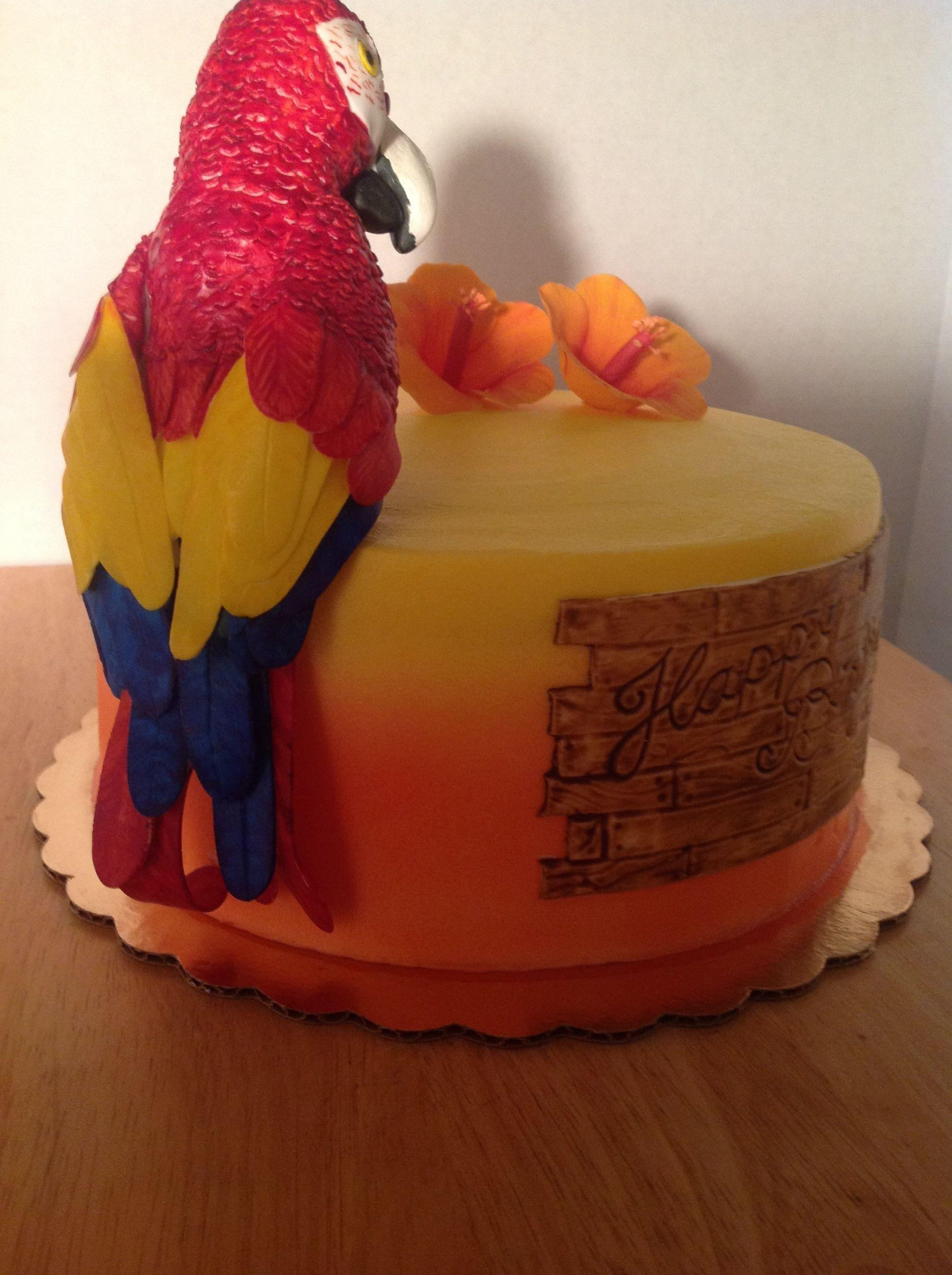 Parrot Cake CakeCentralcom