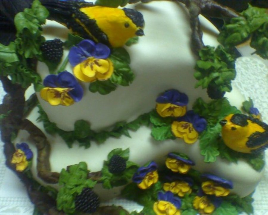 Birds And Berries on Cake Central