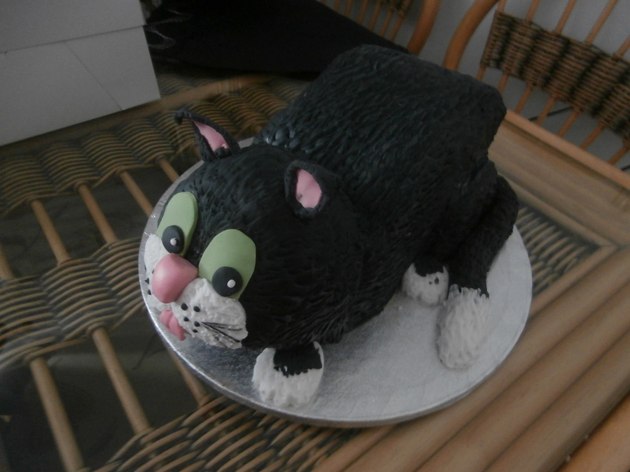 3D Cat on Cake Central