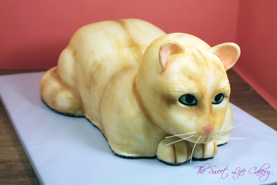 Cat Groom's Cake on Cake Central