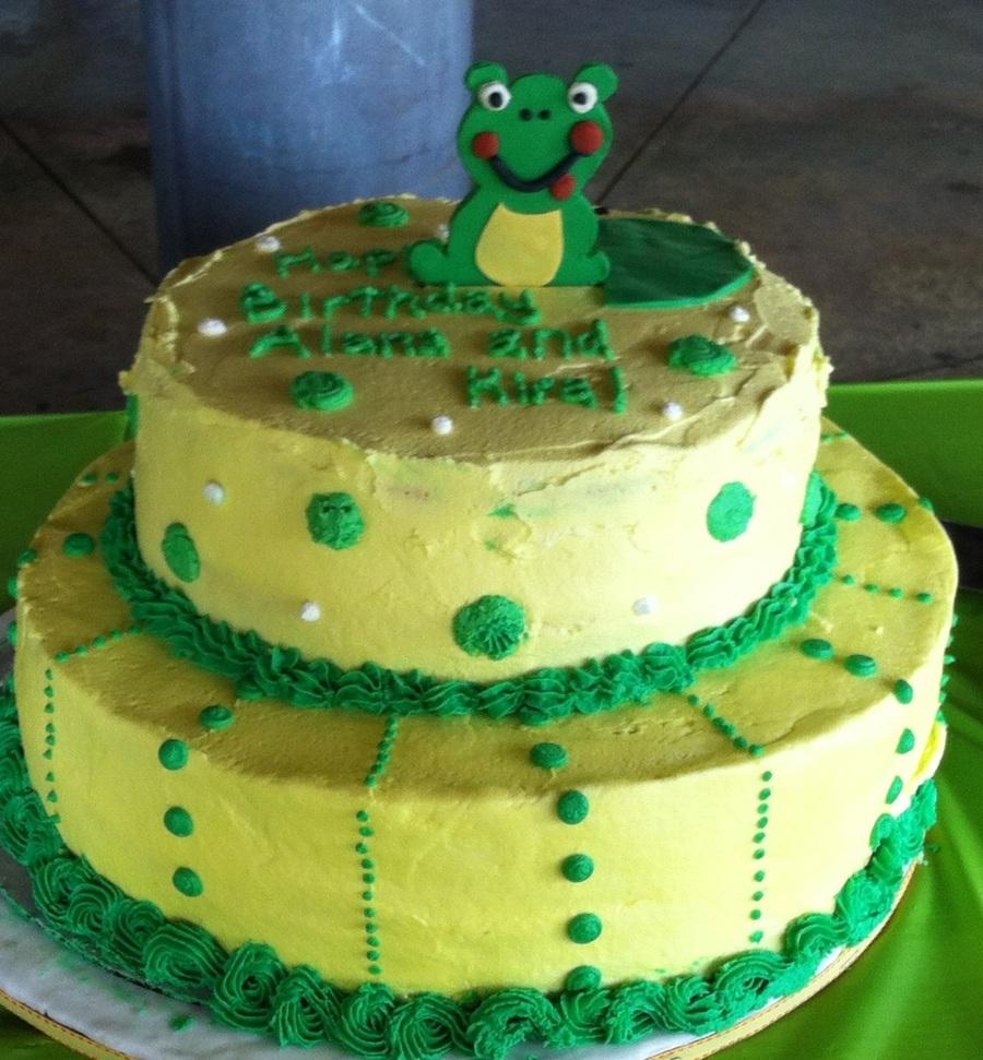 Miraculous Frog Birthday Cake Cakecentral Com Funny Birthday Cards Online Necthendildamsfinfo