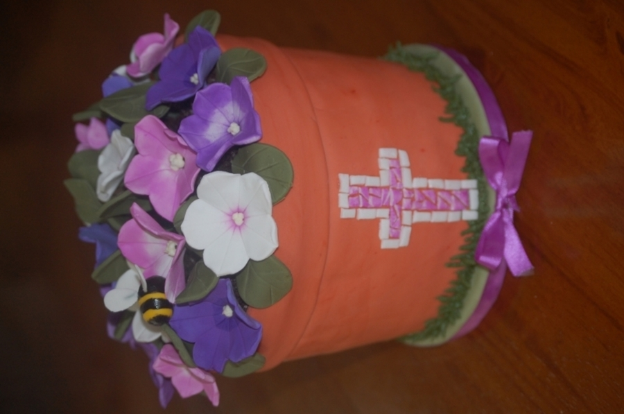 Pot Of Petunias on Cake Central