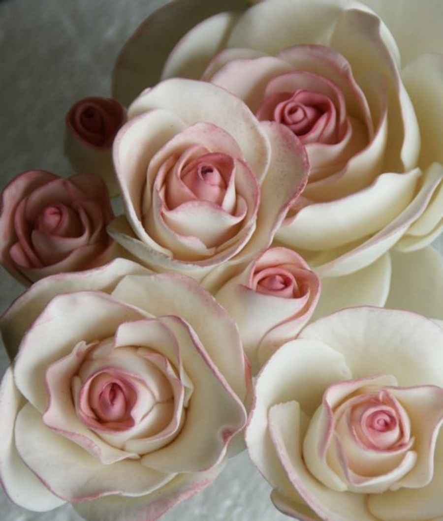 Pink Shabby Chic Sugar Roses By Mili on Cake Central