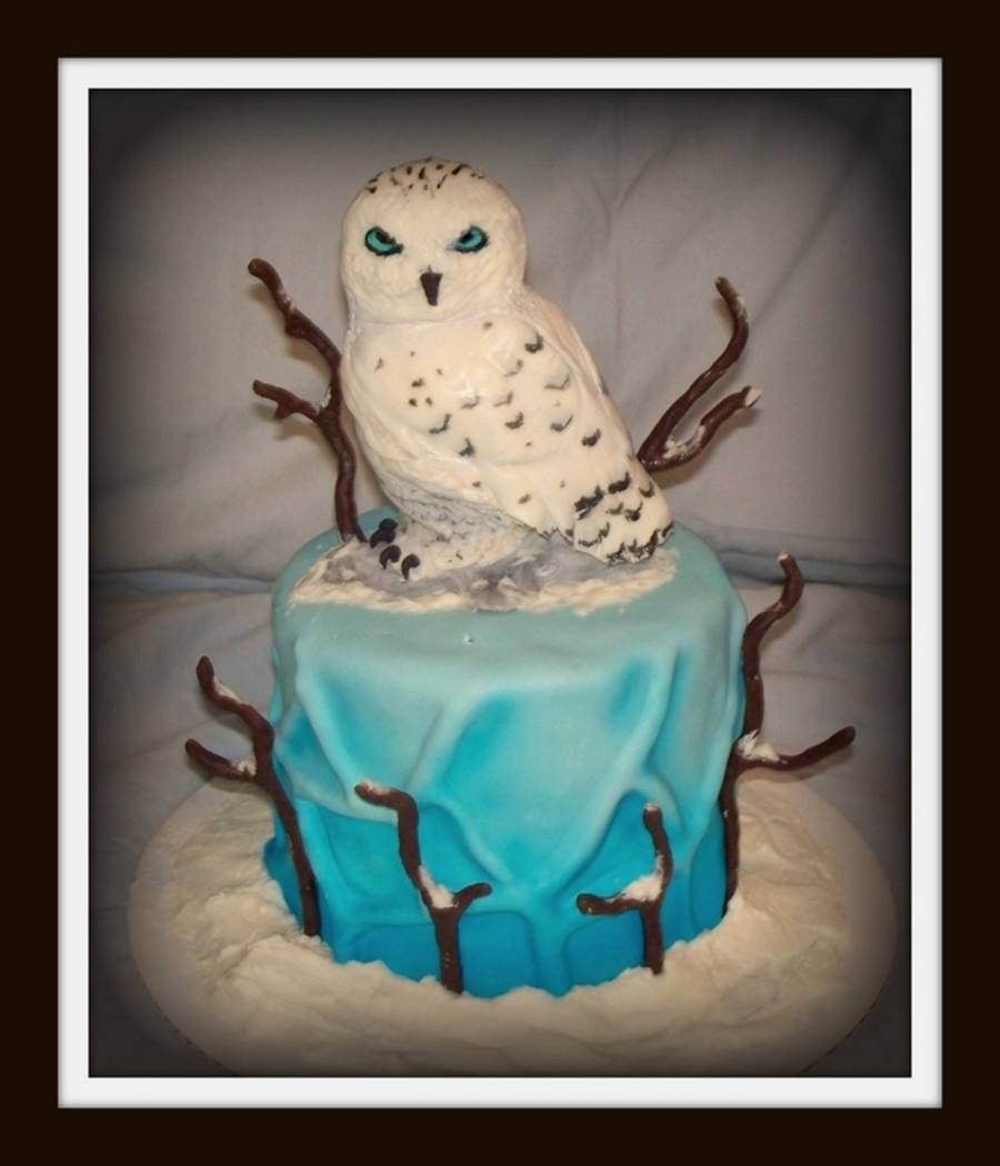 Snowy Owl Cake on Cake Central
