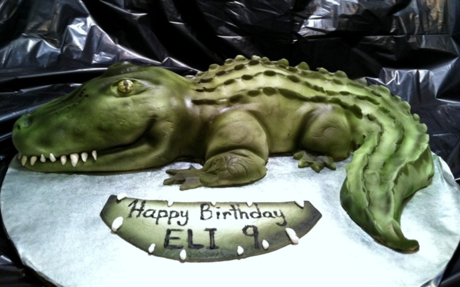 Gator Birthday Cake on Cake Central