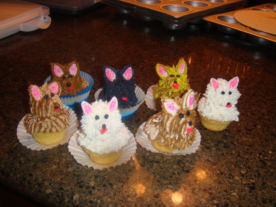 Doggy Cupcakes on Cake Central