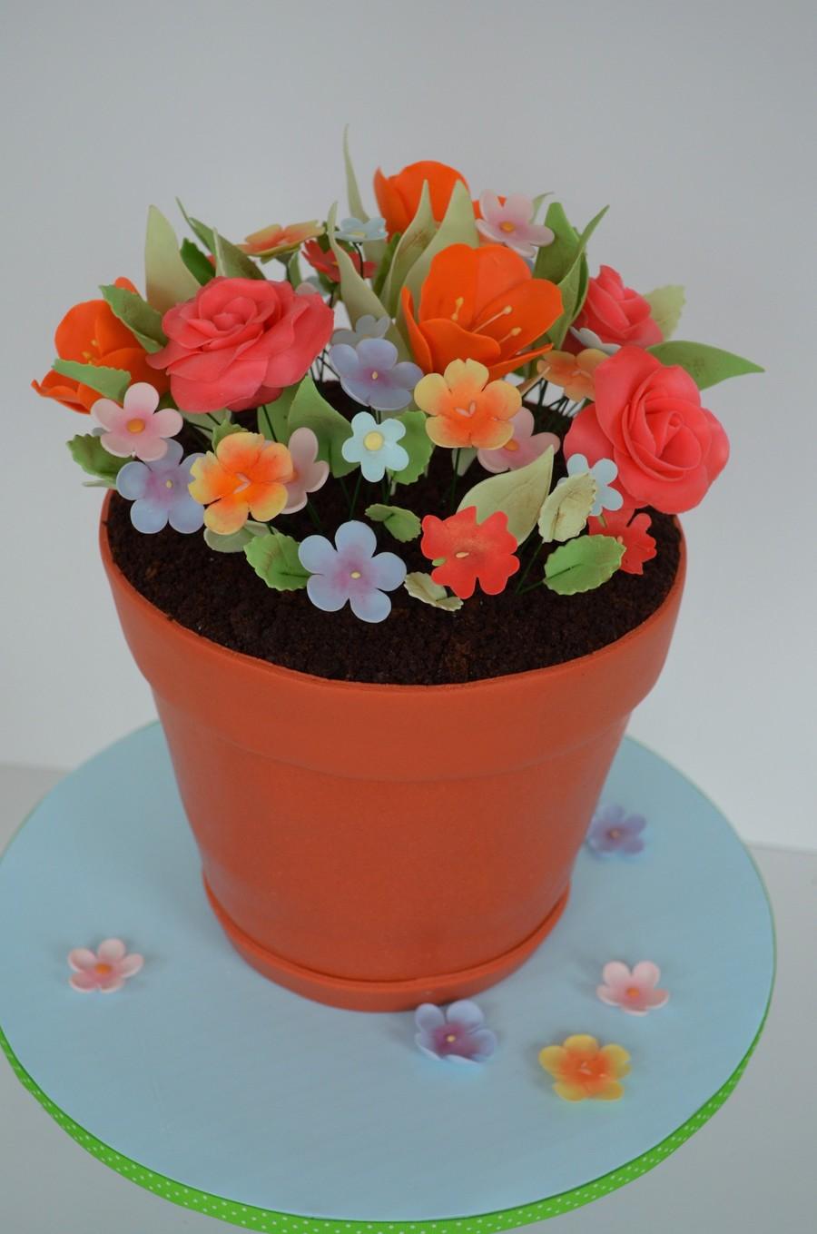 Flower Pot Cake Cakecentral Com