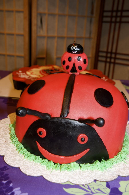 Prime Ladybug 1St Birthday Cake Cakecentral Com Birthday Cards Printable Giouspongecafe Filternl