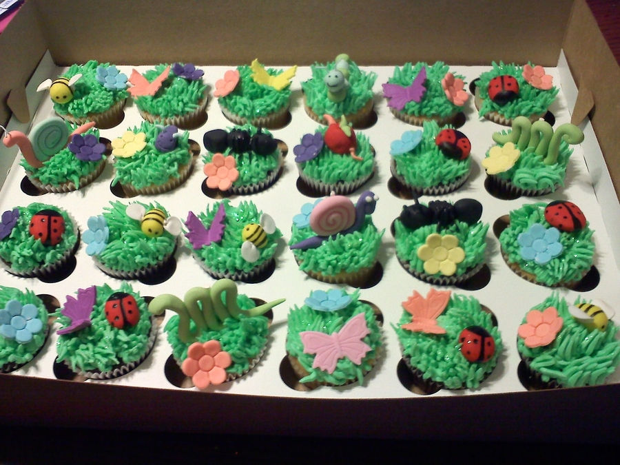 Bug Cupcakes on Cake Central