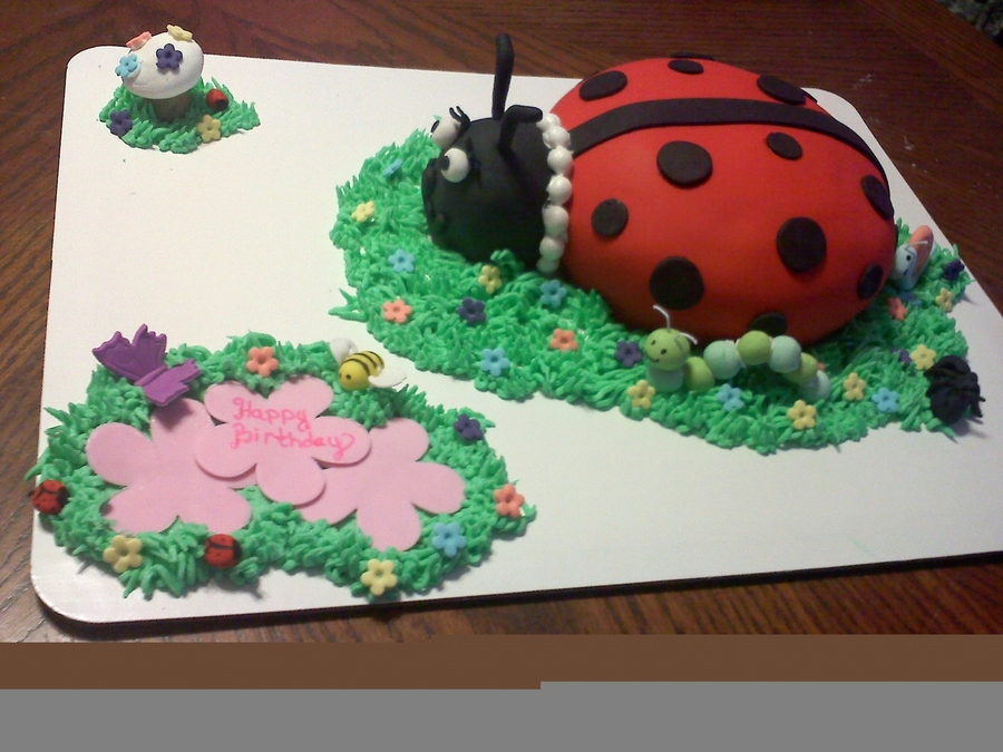 Lady Bug And Friends  on Cake Central
