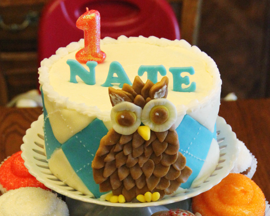 Owl Smash Cake  on Cake Central