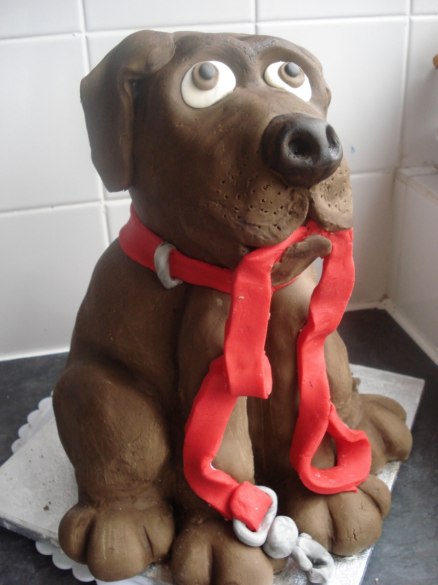 Chocolate Labrador on Cake Central