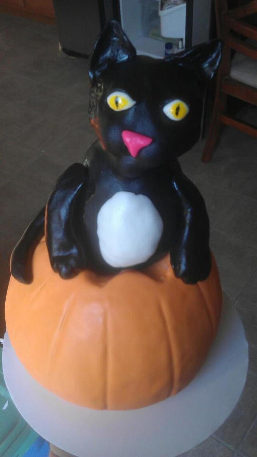 Cat In Pumpkin on Cake Central
