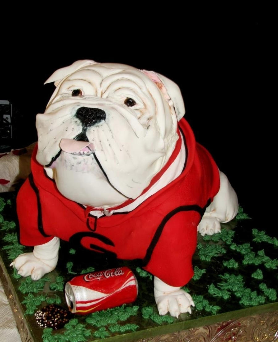 Uga Georgia Bulldog Cake on Cake Central