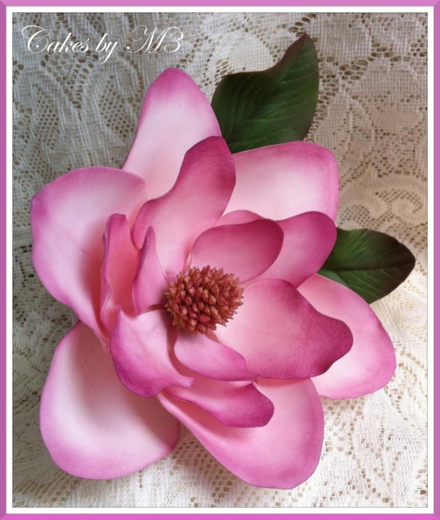 Pink Magnolia on Cake Central