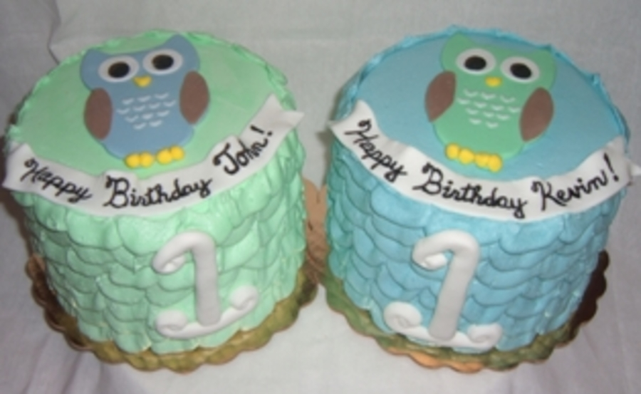 Owl Themed 1St Birthday Smash Cakes For Twin Boys CakeCentralcom
