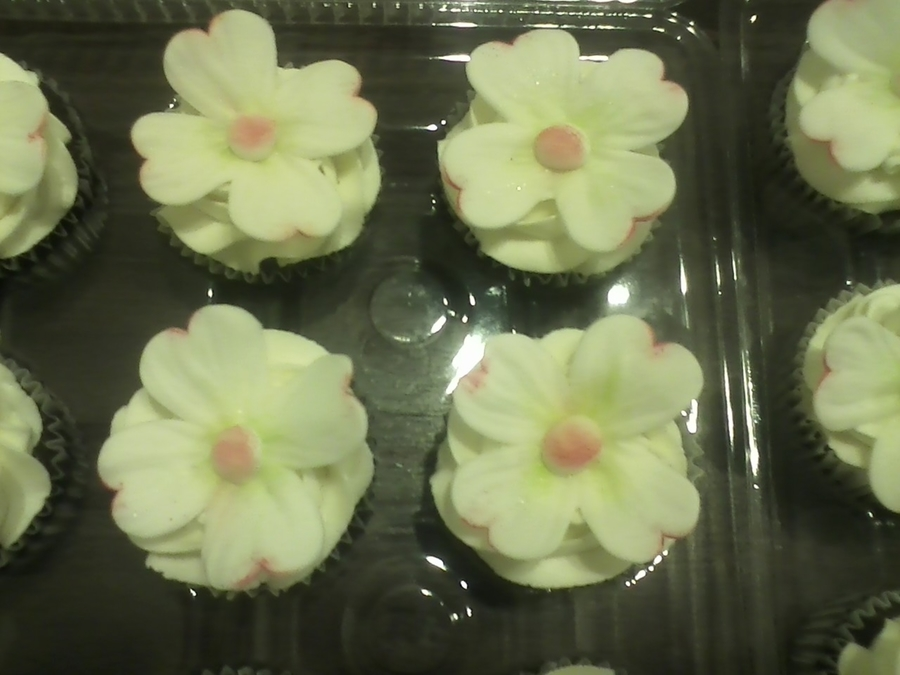 Dogwood Flower Cupcakes on Cake Central