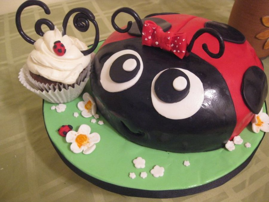 Lady Bug Birthday Cake Cakecentral