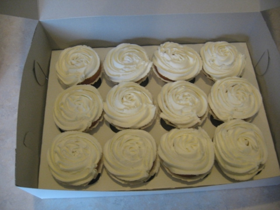Rose Swirl Cuppies on Cake Central