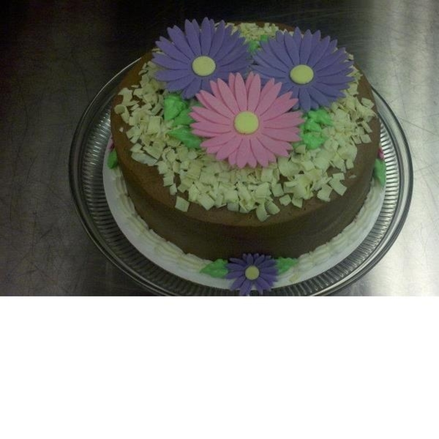 Gerera Daisy Cake on Cake Central
