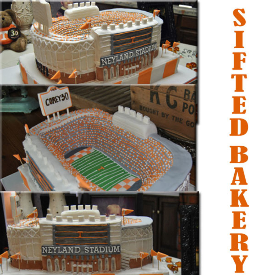 If You Live In Tennessee You Love The Vols This Is One Of Two On The Books In The Next Several Months I Have Learned A Lot Of Lessons Wi on Cake Central