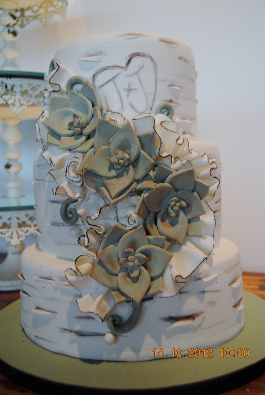 Birch And Succulents Wedding Cake on Cake Central