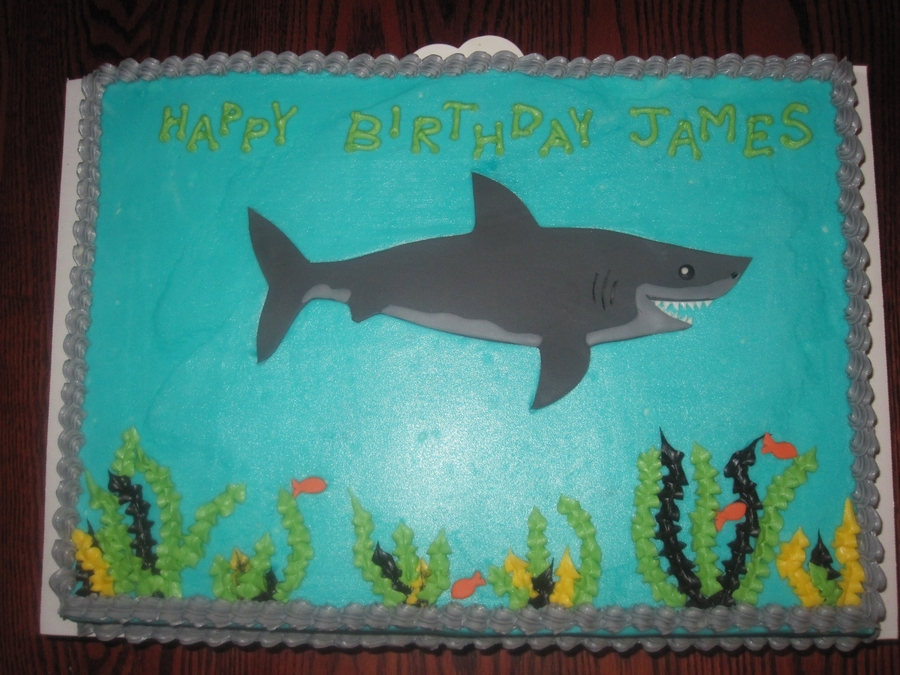 Chocolate Cake Shark