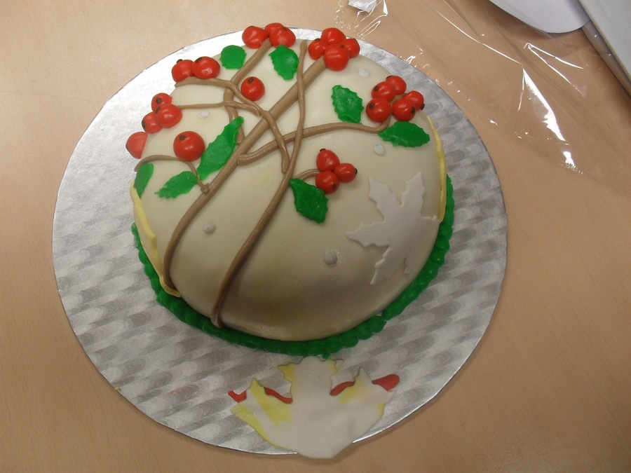 Shinae's Christmas Creation on Cake Central