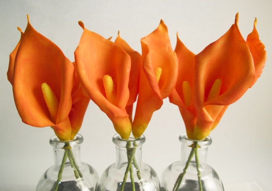 Orange Calla Lilies  on Cake Central
